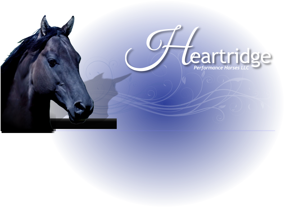 Performance Horses LLC Heartridge